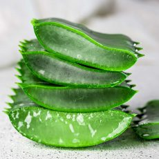 Aloe vera sliced gray on white background.